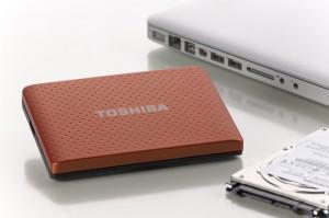 SSD-Festplatten-Datenwiederherstellung
